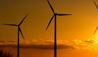 Ökostrom-Reform beschlossen: Industrie wird geschont (Foto)
