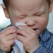 Die Nase kribbelt und läuft - doch ist es wirklich gefährlich, die Nase einfach hochzuziehen, anstatt zu schnäuzen?