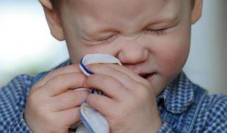 Die Nase kribbelt und läuft - doch ist es wirklich gefährlich, die Nase einfach hochzuziehen, anstatt zu schnäuzen? (Foto)