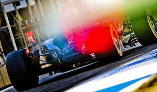Fallows Chef der Aerodynamik-Abteilung bei Red Bull (Foto)