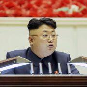 Nordkoreas Machthaber lässt sich an der Staatsspitze bestätigen (Foto)
