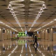 Fische gegen Mückenplage an indischem Flughafen (Foto)