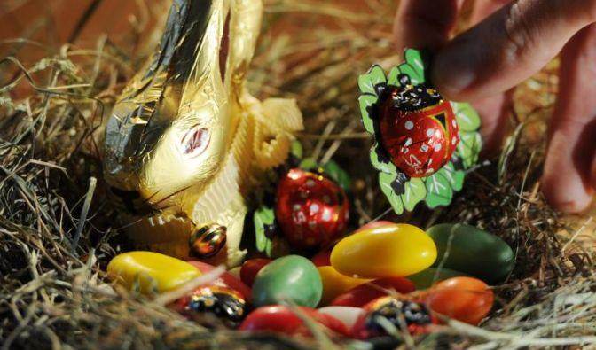 Hier ein Beispiel für eines der beliebten Osternester, die meist von den Eltern liebevoll versteckt werden.