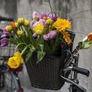 Freunde Ai Weiweis «vorsichtig optimistisch» (Foto)