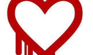 US-Geheimdienst dementiert Ausnutzen von «Heartbleed»-Lücke (Foto)