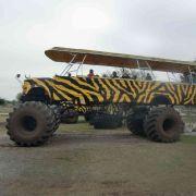 Mit dem Monster-Truck ging es durch die Wildnis von Florida.