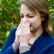 Nach dem milden Winter fliegen die Pollen besonders früh und stark. Für Allergiker gibt es nur wenig Verschnaufpausen.