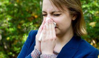 Nach dem milden Winter fliegen die Pollen besonders früh und stark. Für Allergiker gibt es nur wenig Verschnaufpausen. (Foto)