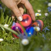 Sonne zur Eiersuche am Ostersonntag (Foto)