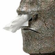 Frisches Taschentuch gefällig? Dann müssen Sie es dem Großen Moai aus der Nase ziehen...