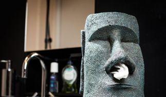 Stilvoller Blickfang: Der Große Moai Taschentuchhalter. (Foto)