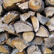 Vorrat für den nächsten Winter: Brennholz locker stapeln (Foto)