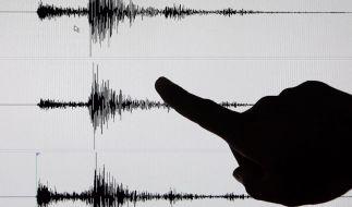 Schweres Erdbeben erschüttert Mexiko (Foto)