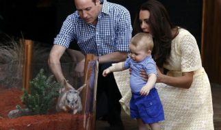 Prinz George und das Bilby: Liebe auf den ersten Blick (Foto)