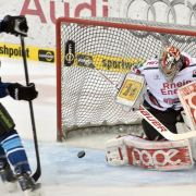 Ingolstadt gleicht in DEL-Finalserie aus (Foto)
