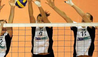 Volleyball: Dresden und Vilsbiburg wollen Titel (Foto)
