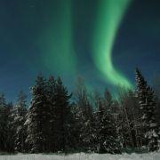 Durch finnische Wälder streife ich als Tellervo Mesikämmen. Und Sie?