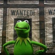 Kermit-Doppelgänger in «Muppets Most Wanted» (Foto)