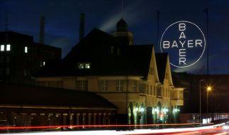 Bayer sieht sich nicht unter Zugwang (Foto)