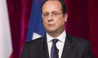 Hollande spricht mit Siemens-Chef über mögliche Alstom-Übernahme (Foto)