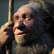 Studie: Neandertaler war modernem Mensch ebenbürtig (Foto)