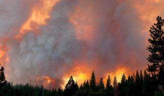 Waldbrände in Kalifornien behindern Reiseverkehr (Foto)