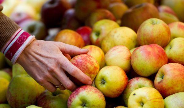 Äpfel, Beeren und Co.