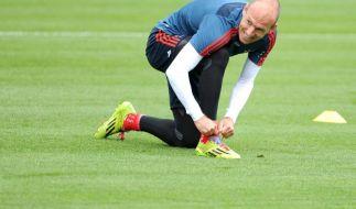 Niederlande beginnen WM-Vorbereitung ohne Topstars (Foto)