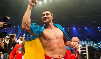 Wladimir Klitschko muss gegen Pulew antreten (Foto)