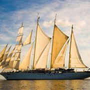 Antarktis, Mallorca, Südafrika: Neue Ziele für Schiffsreisen (Foto)