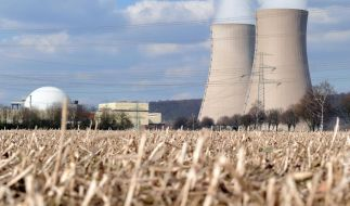 Atom-Konzerne sollen AKW-Rückstellungen abgeben (Foto)