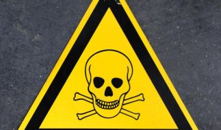 Gift im Spielzeug: Deutschland muss Grenzwerte ändern (Foto)