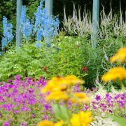Der New German Garden Style begeistert sogar die Engländer (Foto)