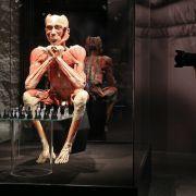 Die Wanderausstellung plastinierter, überwiegend menschlicher Körper gibt es seit 1996.