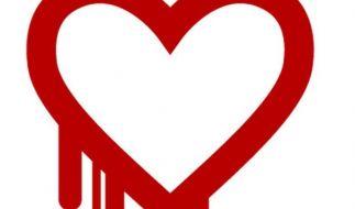 Heartbleed: Entwarnung nach schwerer Sicherheitslücke (Foto)