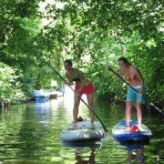 Stand Up Paddling ist Sommer-Ganzkörpertraining (Foto)