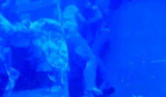 Seit September liegen sie in ewiger Umarmung auf dem Meeresgrund vor Lampedusa. (Foto)