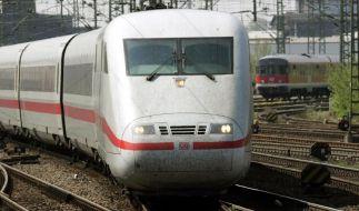 Mehr Internet-Zugänge in Zügen und Bahnhöfen geplant (Foto)