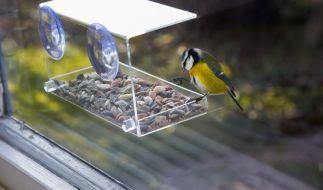 Nicht nur die Vögel werden an diesem Häuschen ihre Freude haben. (Foto)