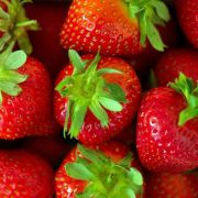Erdbeeren in Schüssel mit Wasser reinigen (Foto)