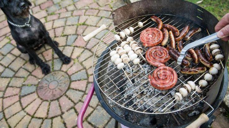Kein Steak oder Gyros: Grillfleisch macht Hunde krank (Foto)