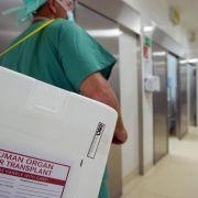 Bei früh erkanntemLeberzellkrebs ist Transplantation möglich (Foto)