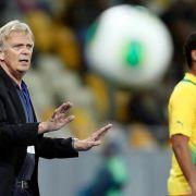 Kameruns Härtetest gegen DFB-Elf (Foto)