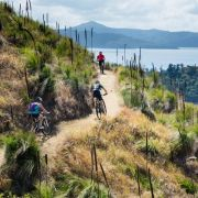 Rad und Rosen: Reisetipps für den Sommer (Foto)