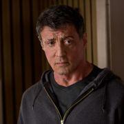 Er kennt sich bestens mit Boxfilmen aus: Der mittlerweile 67-jährige Sylvester Stallone.