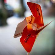 Prokon-Gründer Rodbertus muss mit hohen Forderungen rechnen (Foto)