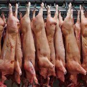 Fleischindustrie blickt sorgenvoll in die Zukunft (Foto)