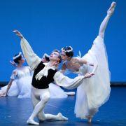 Berliner Ballett-Star Malakhov geht (Foto)