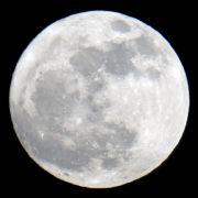 Mann schießt auf Mond - und landet im Knast (Foto)