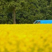 EU einigt sich auf Fördergrenze für Sprit aus Mais oder Raps (Foto)